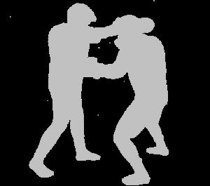 Thaiboxing-500-uus